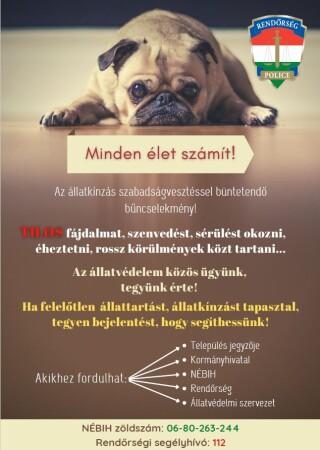 állatkínzás plakát